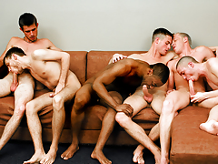 Fellatio Fest Party! The Boys Are Switching Orally fixating Assistants