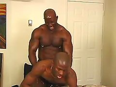 Lustful black studs fuck brains out