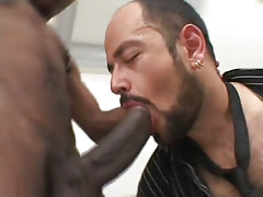 Hairy gay throats huge black dick
