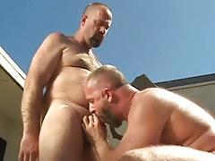 Mature gay sucks his bear boyfriend outdoor