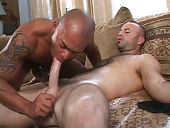 Hairy gay sucked by latin guy on sofa