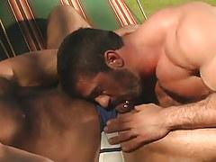 Bear gay sucks his hairy boyfriend