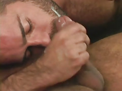 Hairy gay gets cum on face