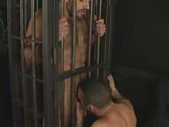 Hairy mature gay sucked in cage